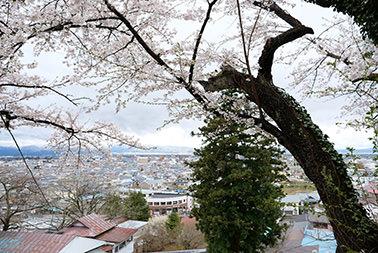 观光白虎队切腹的地方,会津若松「饭盛山」