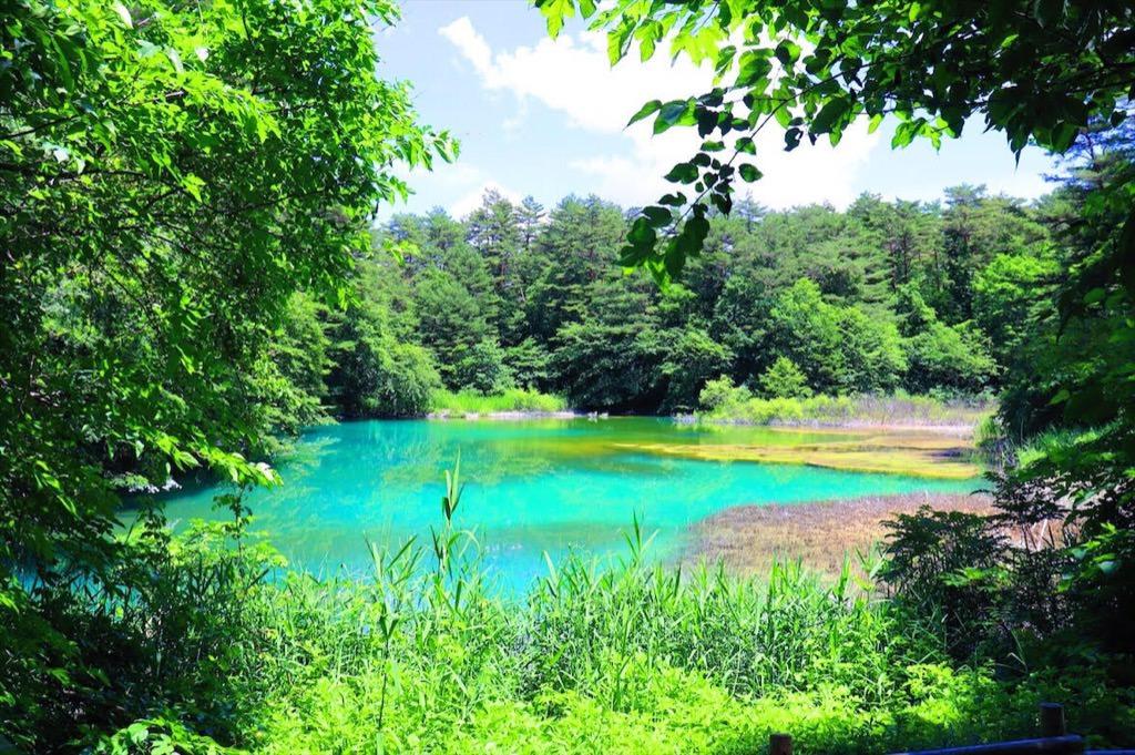 会变色的不可思议的五色沼 Goshikinuma 去看一下吧 フクシマアライブ