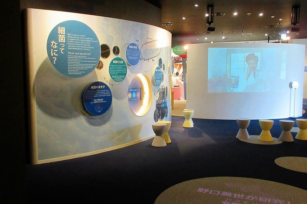 細菌コーナー2